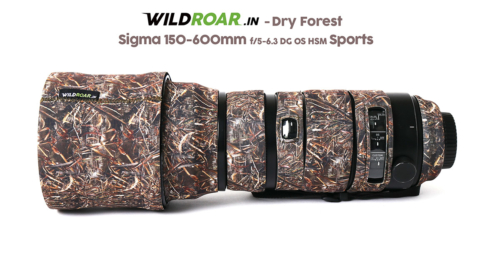 sigma_Sports_Dry_Forest_2
