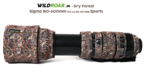 sigma_Sports_Dry_Forest_3